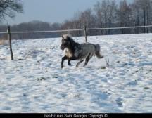 Léonie qui profite de la neige