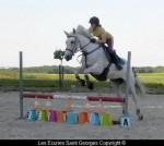 cours de sauts avec Dorine et Lolita