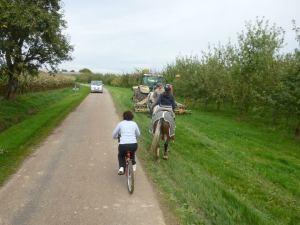 Delphine la cycliste chevronnée